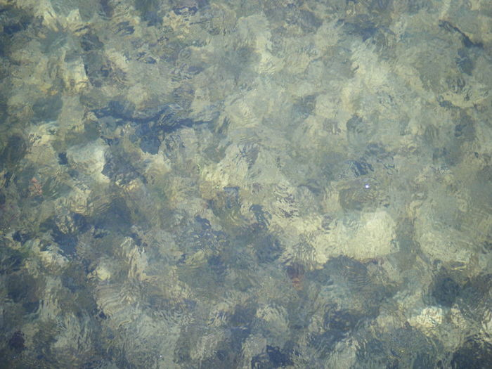 Blue Clear Water Glistening Green Lake River Shining Spotted Water