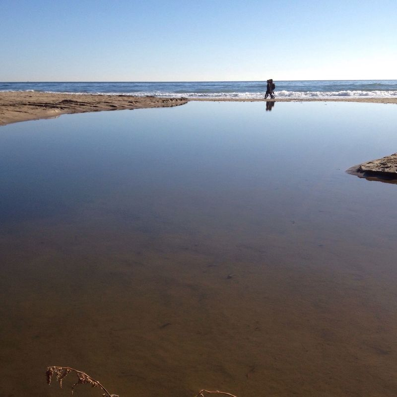 Water Scenics Nature One Person Beauty In Nature Outdoors Sea Beach Real People Full Length Day Sand Horizon Over Water Sky One Man Only