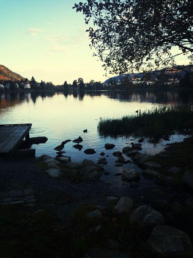 Morning Run Lake Beautiful Norway Hello World