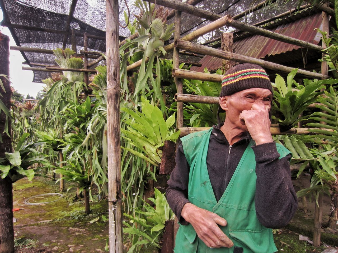 No thumb. Street Photography One Person One Man Only Nursery Garden Adults Only Plant Nature Senior Adult Plants Plantation Plants And Garden Gardening Unique Plant Unique Perspectives Badass Badass For Life at Puncak  Bogor Greenhouse