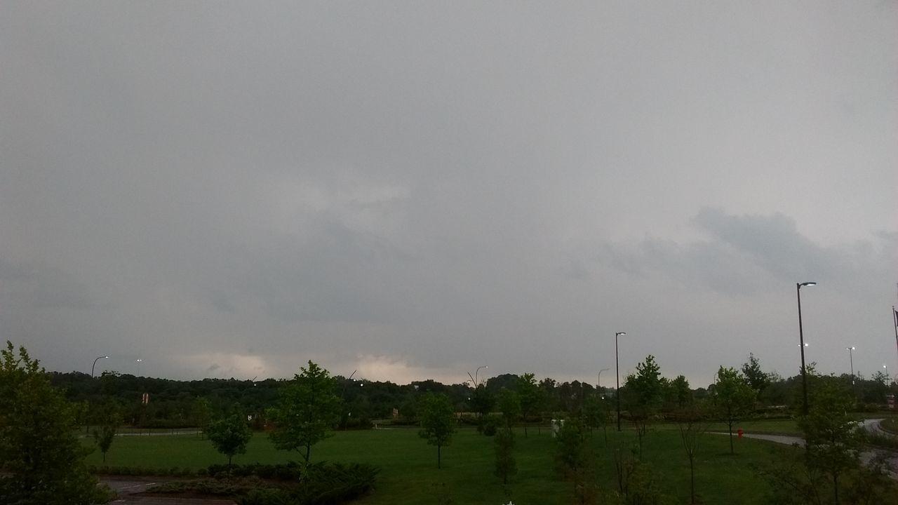 sky, tree, nature, cloud - sky, no people, outdoors, scenics, landscape, day, beauty in nature, storm cloud, wind turbine, wind power, windmill, industrial windmill
