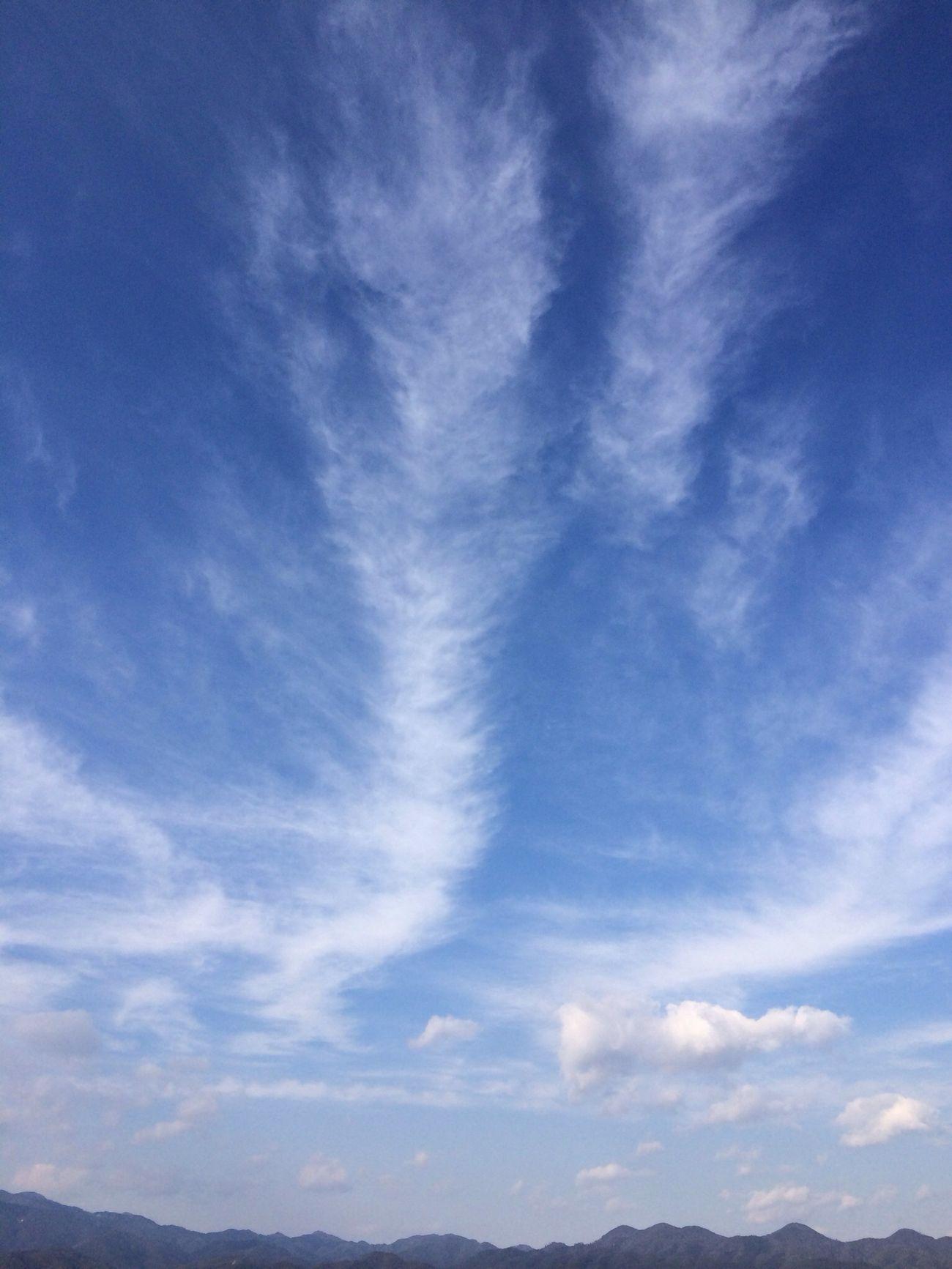 大掃除の休憩……フゥ♪の空。 冬空