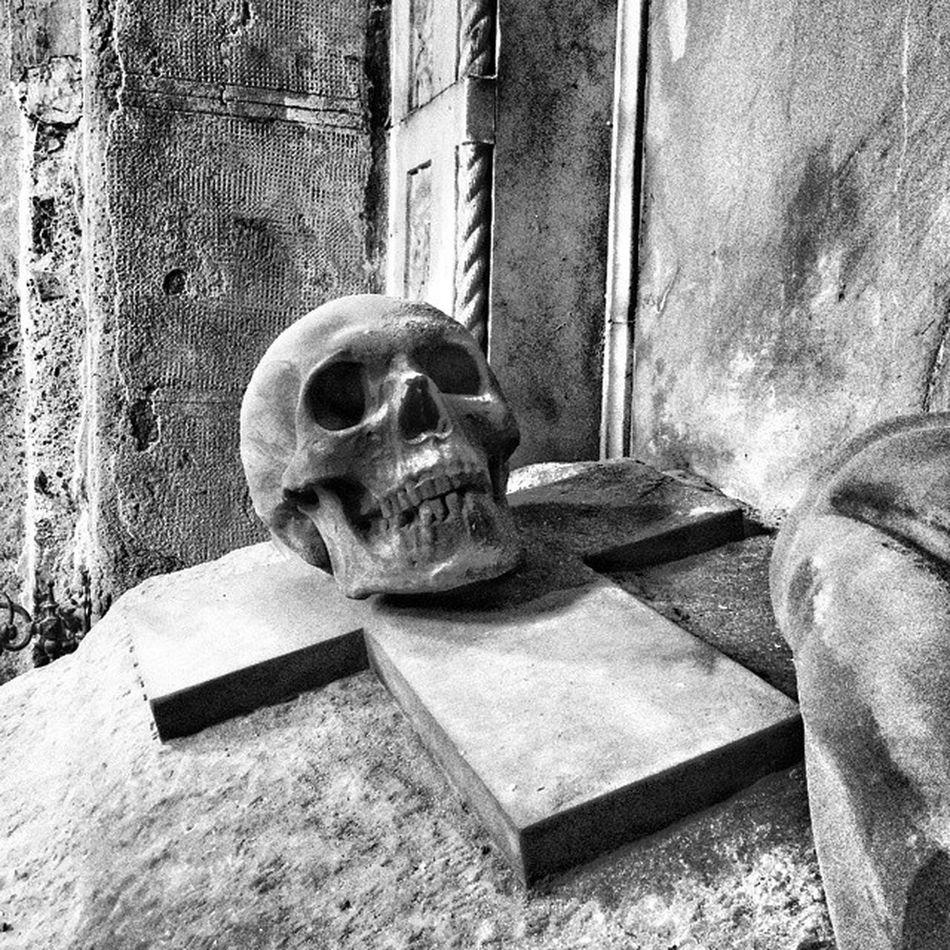 Staglienocemetery Staglieno_cemetery Staglieno Cimitero Cemetery Grave Tomba Skull