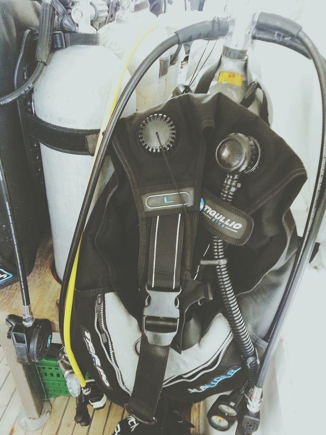 Gear up for the third day of diving. Relaxing Scuba Diving Traveling Sea