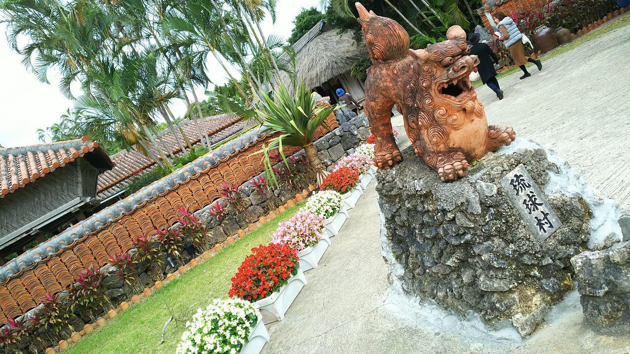 琉球村のシーサーと家々人の写り混みあり Plant Close-up Flower Tree Lifestyles Day Outdoors Sky シーサー 観光地