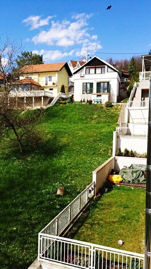 Real life FarmVille Taking Photos Sunny☀ Croatia ♡ Relaxing Good Morning!