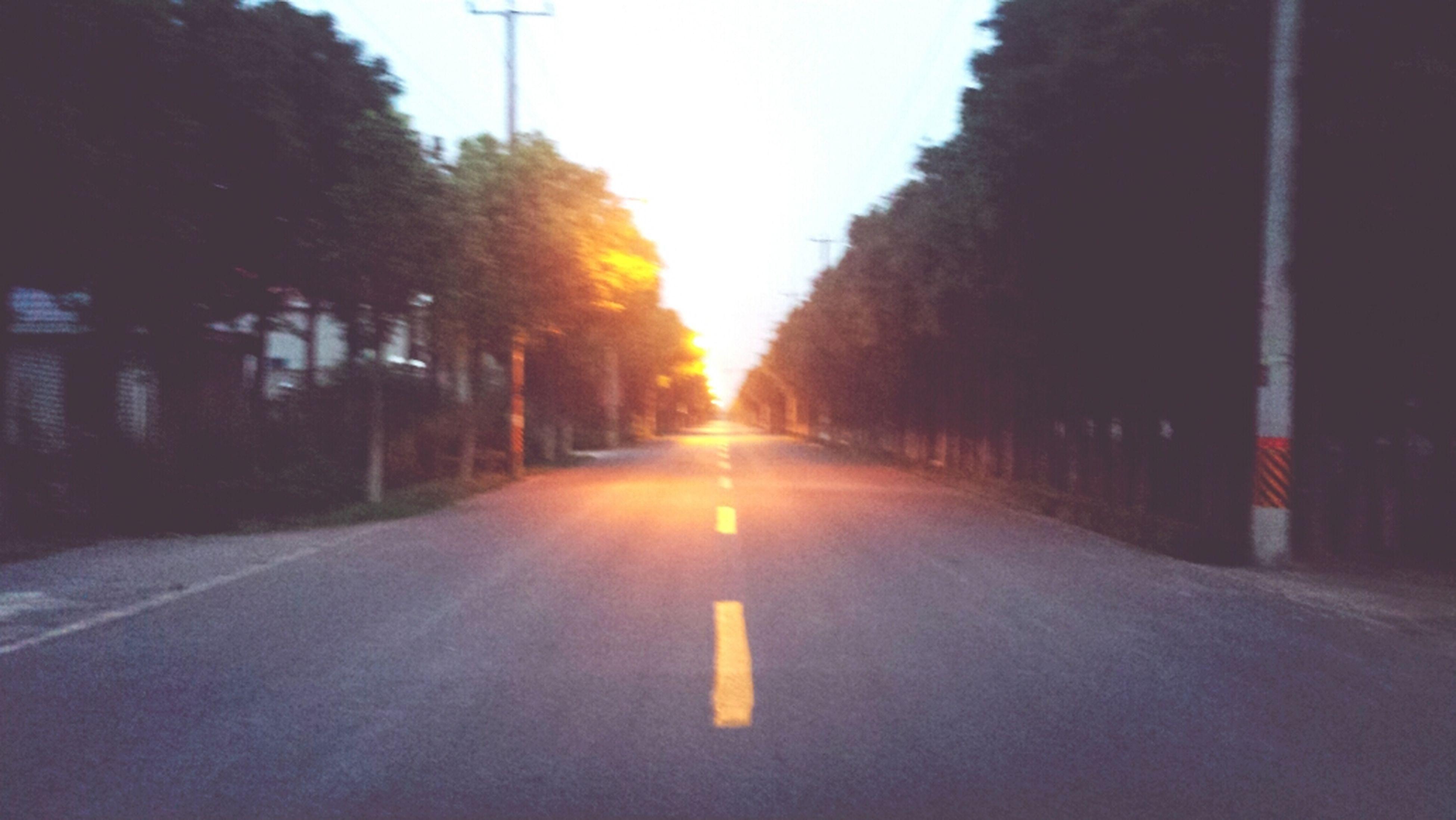 the way forward, transportation, diminishing perspective, road, vanishing point, tree, road marking, street, empty, empty road, sunset, asphalt, street light, long, no people, sky, outdoors, road sign, clear sky, sunlight