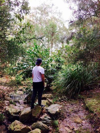 Full Length Tree Rear View Walking Men Leisure Activity Lifestyles Casual Clothing Growth Day Footpath Outdoors The Way Forward Nature Tranquil Scene Green Color Tranquility Beauty In Nature Tall Scenics First Eyeem Photo