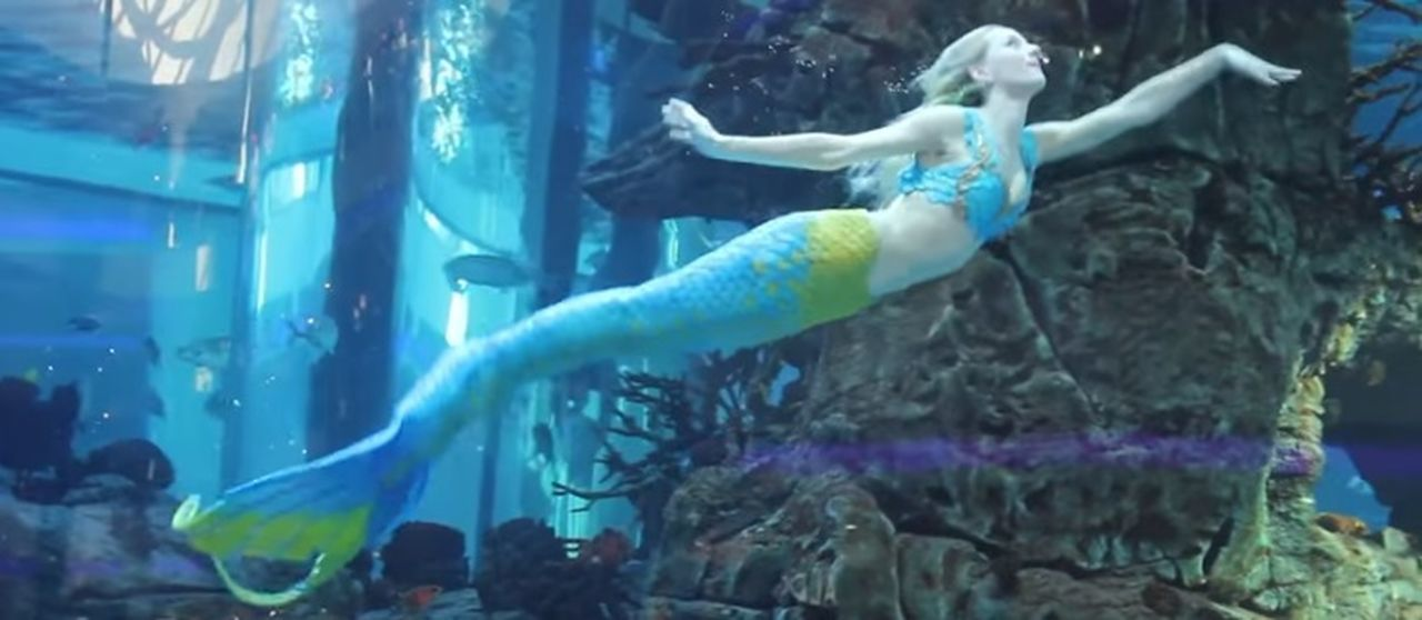 casablanca Aquarium Fish Large Group Of Animals Mermaid Morocco Mall People Swimming Underwater Water