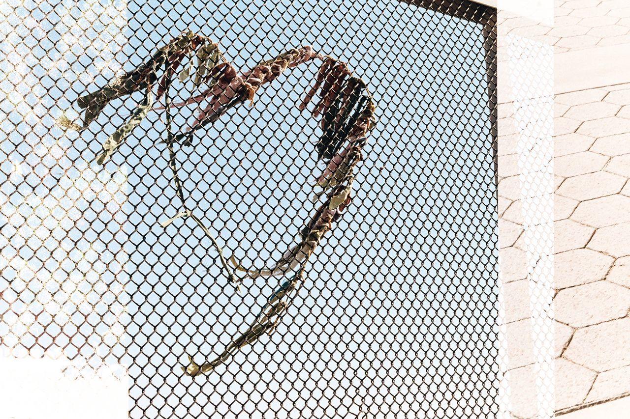 Art Is Everywhere and Love is everywhere. Found this random art on a bridge in Santa Monica. [35mm Kodak Ultamax Film, Canon AE-1] Film Photography Filmisnotdead Filmcamera 35mm Film Kodak 35mm Filmphotography Street Street Art Photography California Santa Monica Art ArtWork Travel Film Cut And Paste