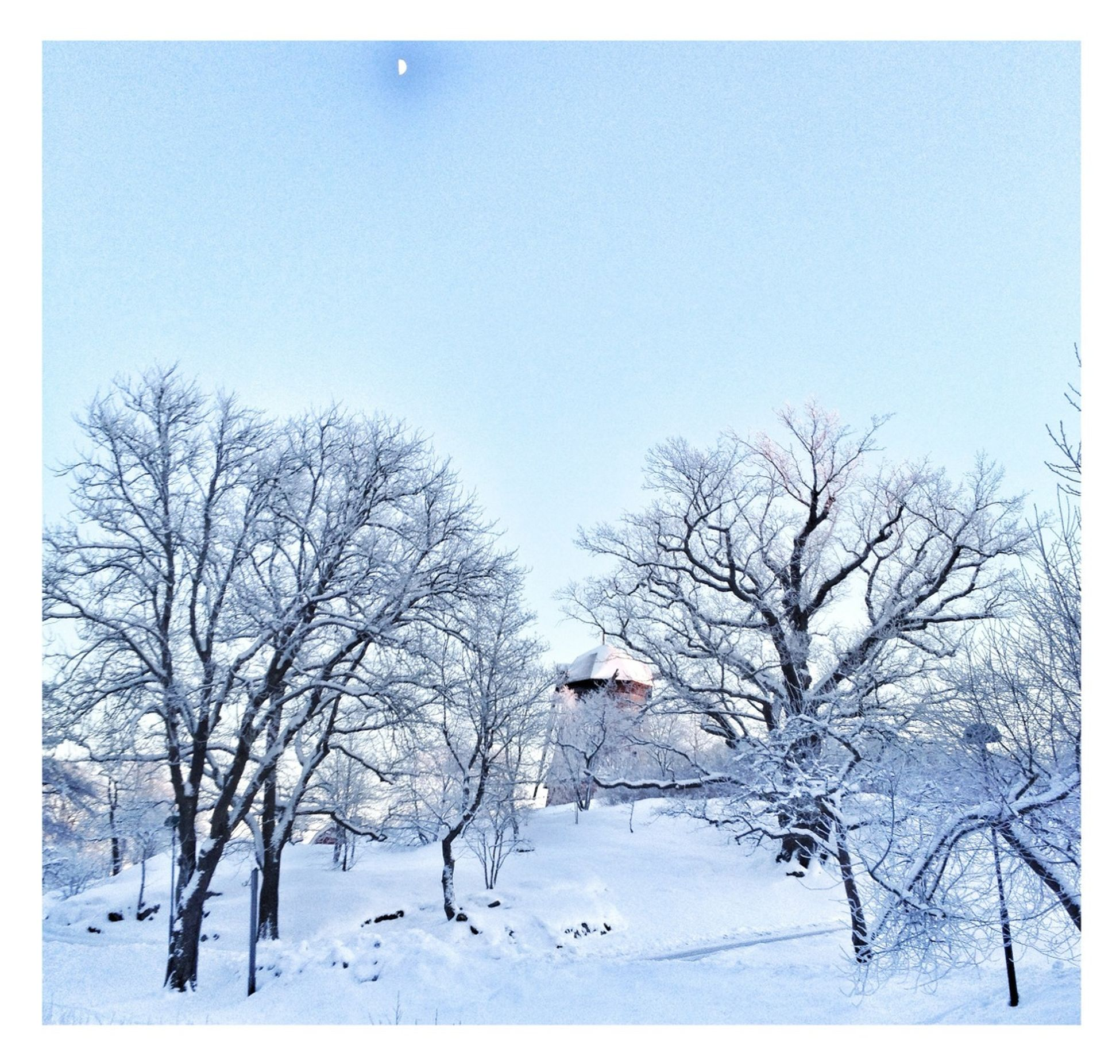 postprocessing, cold, cold temperature, winter, weather, tranquility