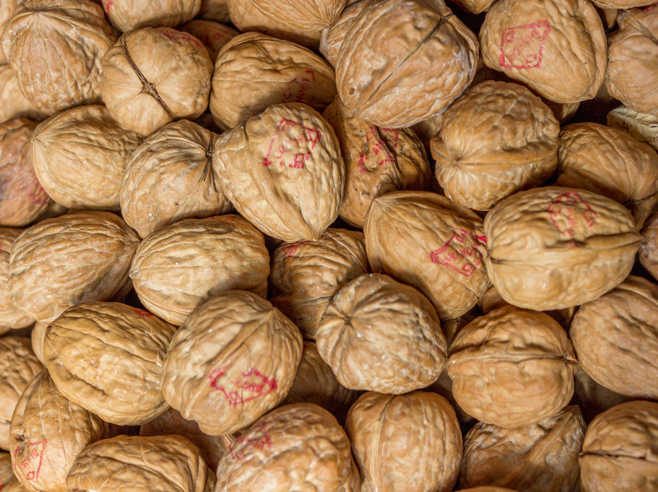 A Lot Of Backgrounds Brown Close-up Day Food Food And Drink Freshness Full Frame Group Healthy Eating Large Group Of Objects Many Mar Nature No People Nut Nutella Nutshell Text Walnut