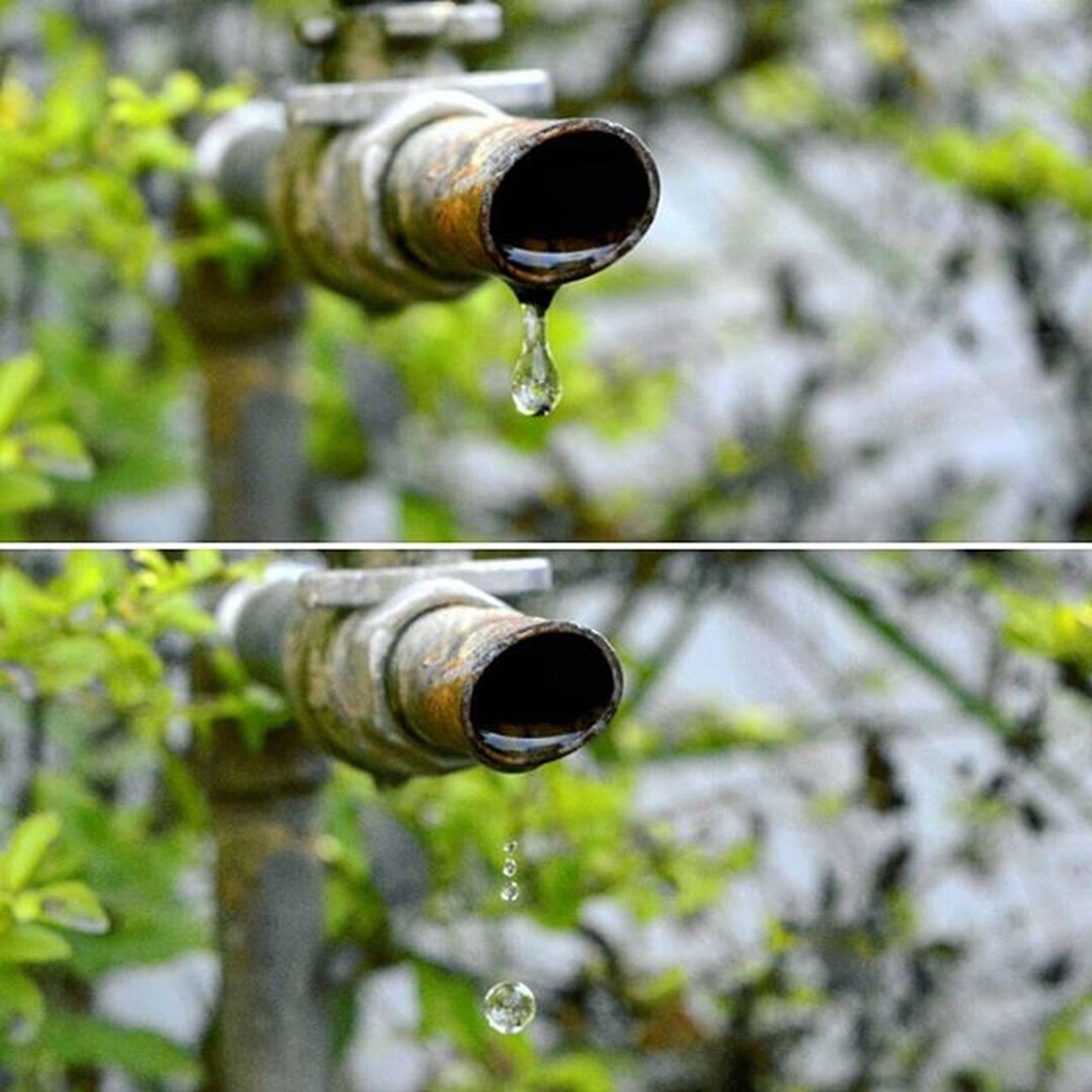 Photos Collage Waterdrops Stopmotion Highshutterspeed Nikon DSLR Follow Photooftheday Followme Focus Capture Moment