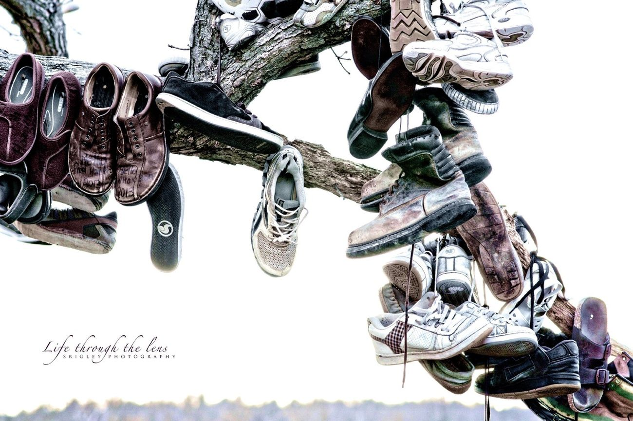 Shoes Nature Walk Other People's Shoes Shoetree
