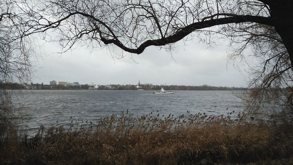 Außenalster Ii. · Hamburg Germany 040 Hh Alster River Water Boat Winter Winter Day Winter Winds Gray Day Clouds And Sky Nature Plants Tree Hugging A Tree Framed Everyday Beauty
