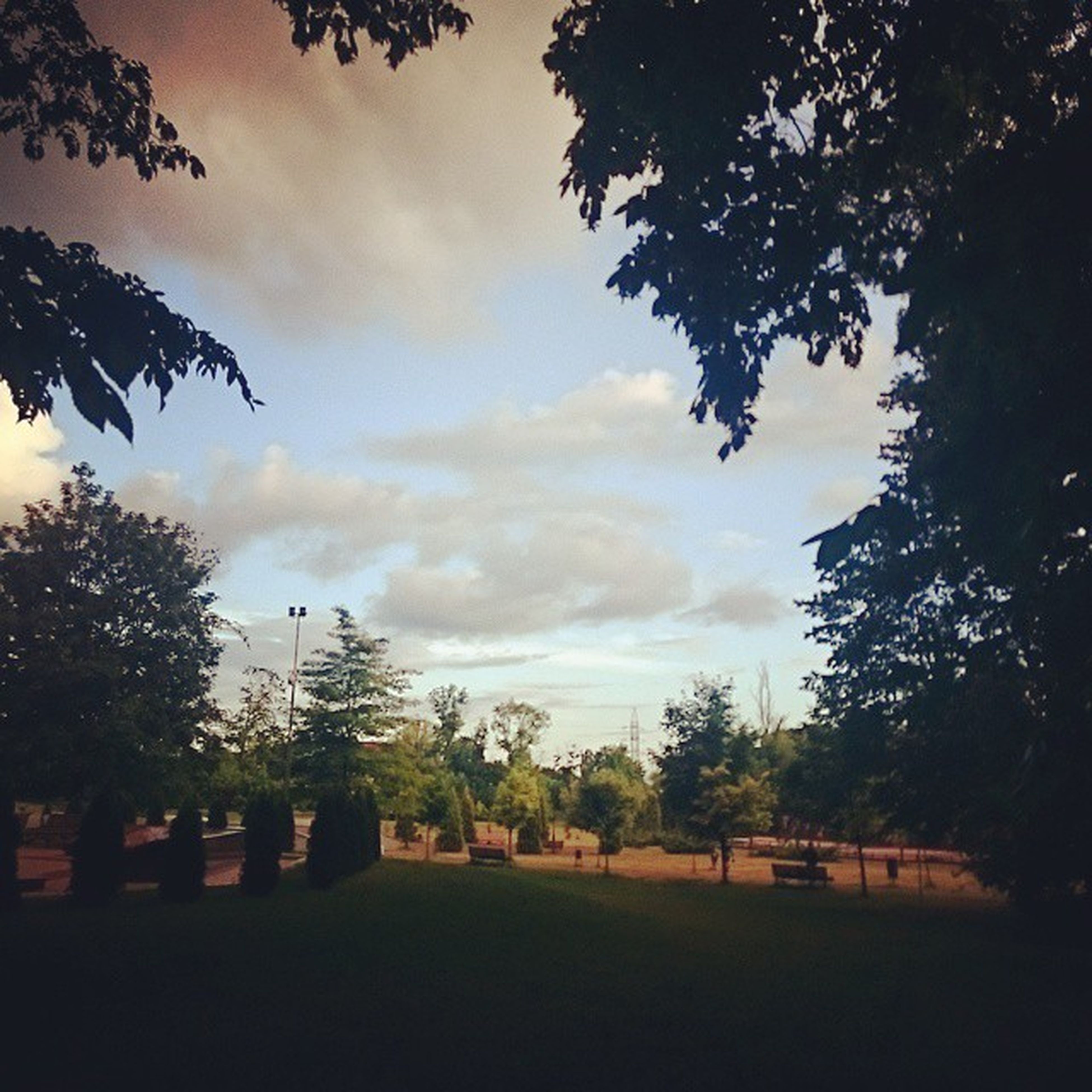 tree, sky, cloud - sky, cloudy, tranquility, tranquil scene, nature, silhouette, scenics, cloud, beauty in nature, growth, landscape, field, branch, park - man made space, sunset, overcast, outdoors, weather