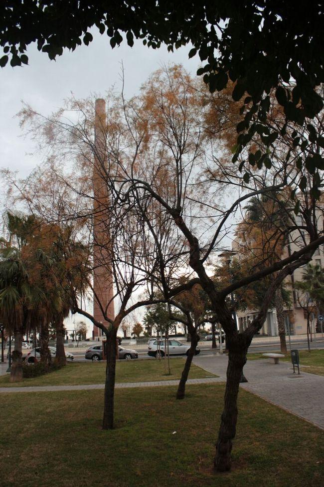 Andalucía España Malaga Torre Mónica