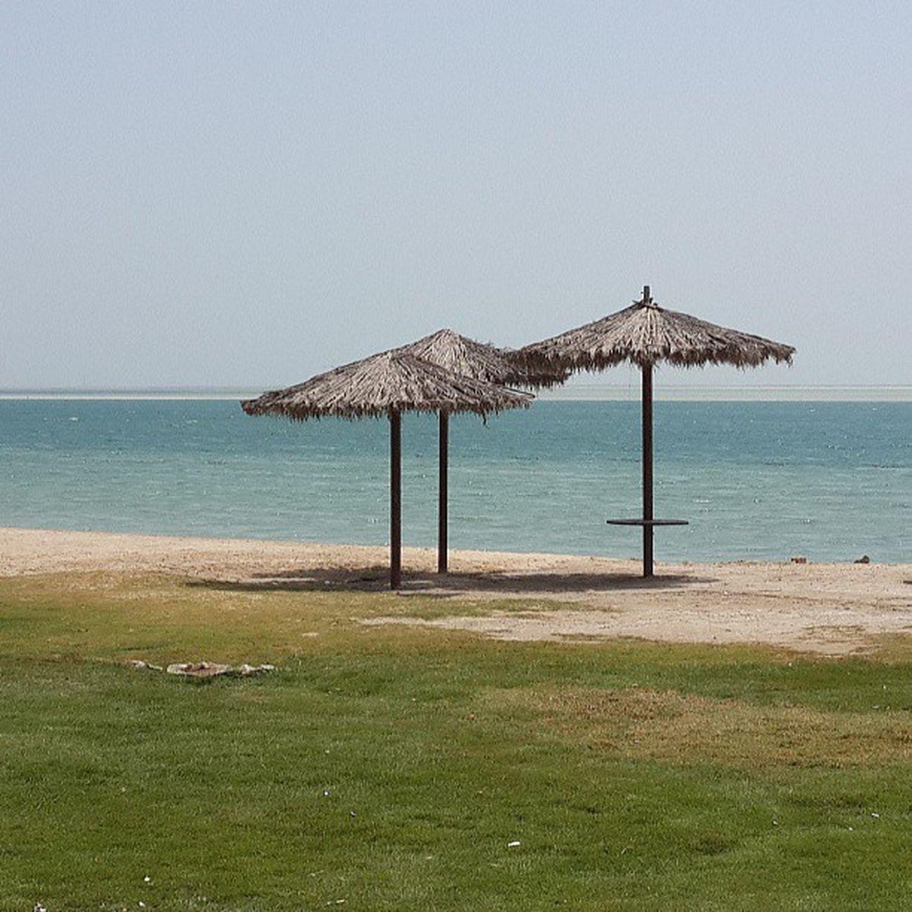 الجبيل شاطئ النخيل