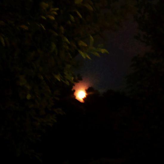 Moon Moonlight Nightphotography Shine Beautiful Likepls Likeforlike Forsale Pleasefollow