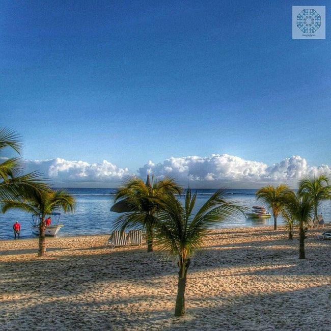 Strand am Le Victoria - Mauritius Beachcomber Levictoria Le_victoria Mauritius beach instagood me cute follow like photooftheday tbt followme tagsforlikes beautiful picoftheday happy instadaily igers bestoftheday swag instalike like4like instamood tflers webstagram
