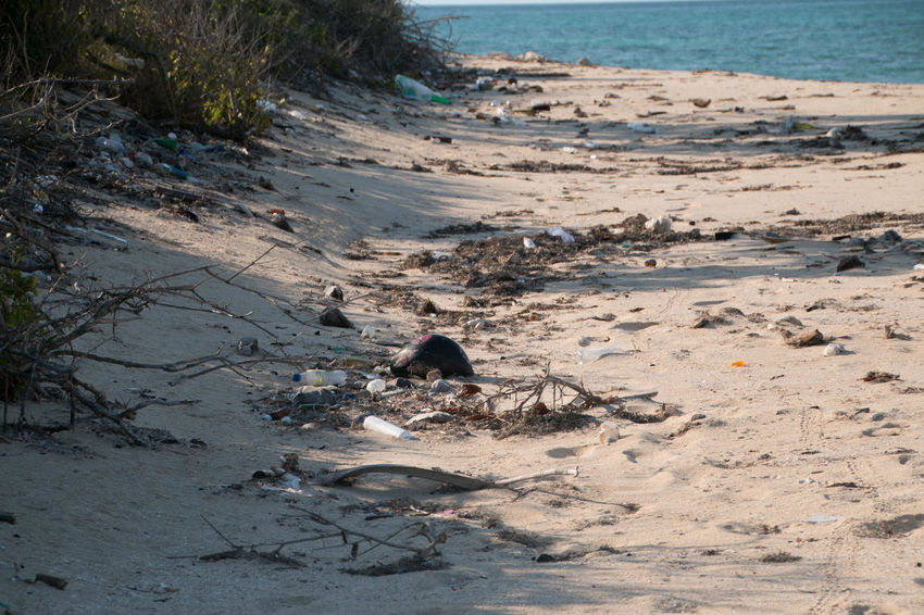 Humans are killing the environment, the sea is our first victim, a very beautiful beach is destroyed by the dirt we throw in the sea Day Dumping Rubbish No People Outdoors Polluted Polluted Beach Pollution Pollution In My World Pollution Of The Environment Pollution ın My World