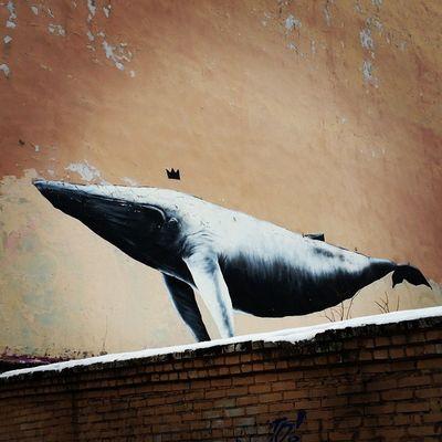 Граффити кит