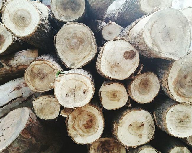 Wood Logs Wooden Log Nature Brown Outdoor Raw Natural Pattern EyeEm Gallery Random Natural Colors
