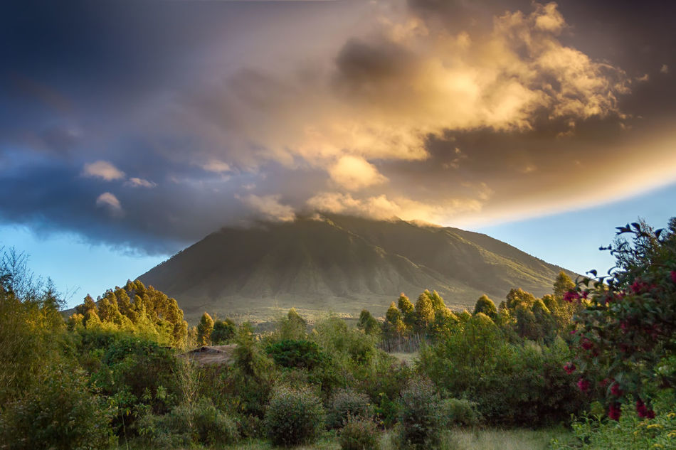 Atmospheric Mood Beauty In Nature Cloud - Sky Day Dramatic Sky Landscape Lush Foliage Mountain Mountain Peak Nature Rwanda Sabyinyo Sky Sunlight Sunset Tree Virunga Mountains Miles Away