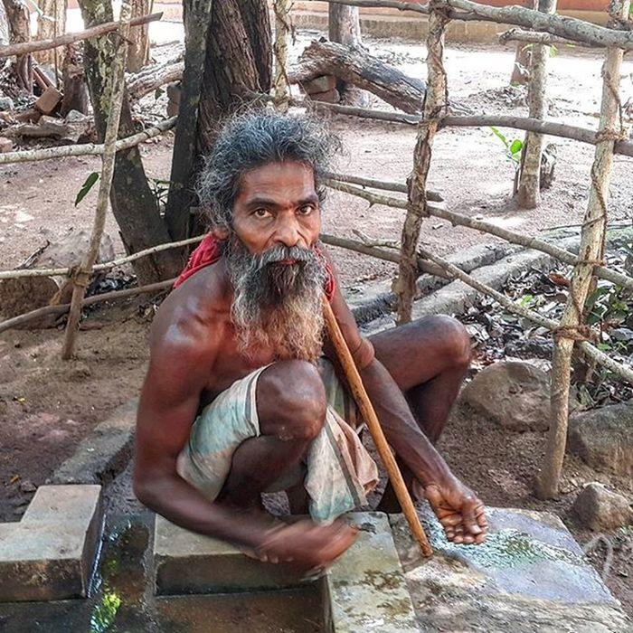 Мы в деревне племени ведда шриланка шриланка2016 SriLanka Srilanka2016 турсемействахеваге