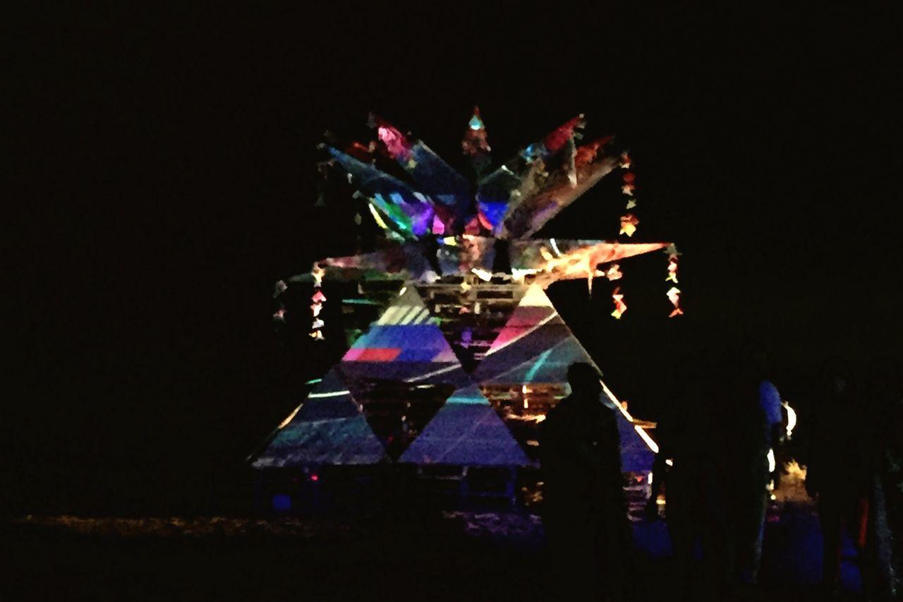 Night Projection Mapping Lotus Art Installation Shadows
