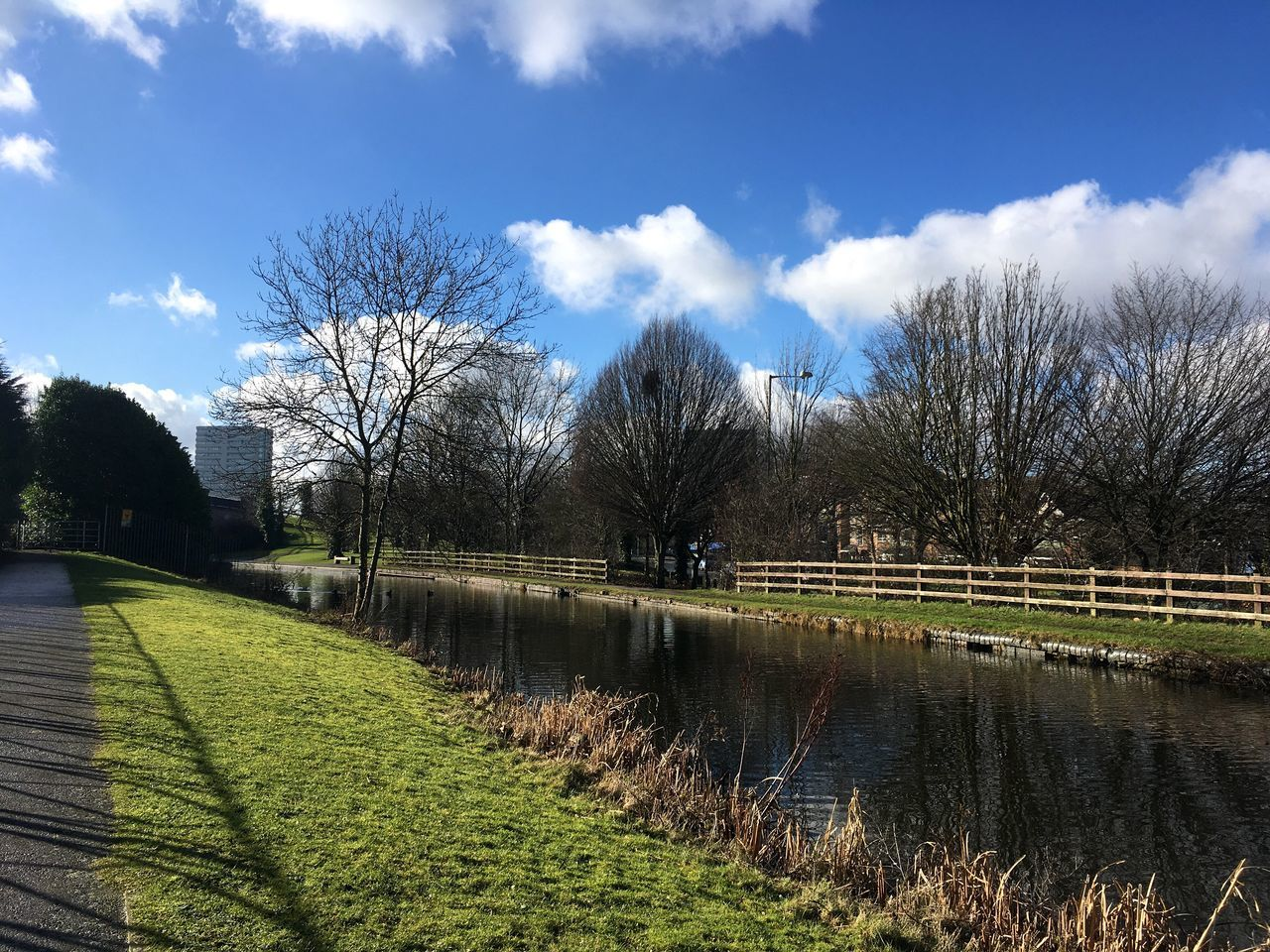 Green Color Sky Beauty In Nature Winter Blue Sky Canal Walks Wolverhampton
