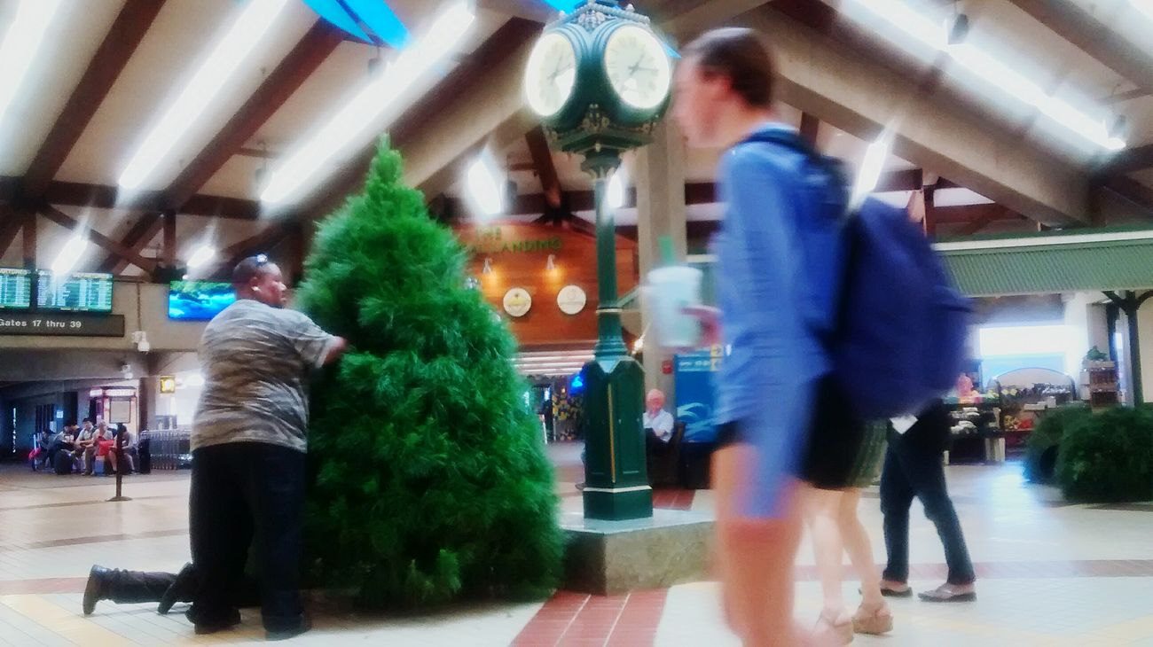 Putting up the Christmas tree at the airport on Maui. Picturing Individuality Loving Life! Healing Place  What Does Peace Look Like To You?
