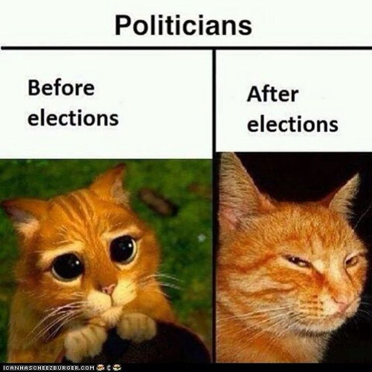 There are some elections coming up, folks. Beware! Paternalistic frauds and totalitarian lunatics are hiding everywhere! Politicians Frauds Liars Hypocrites powerhungry