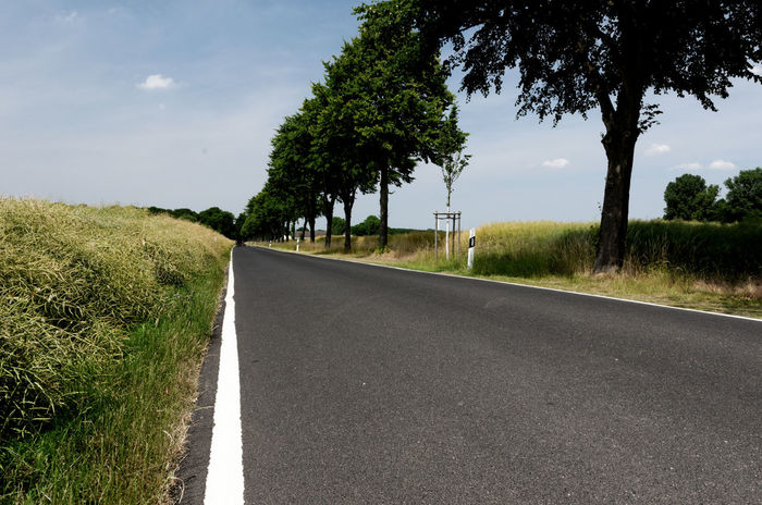 Asphalt Beauty In Nature Country Road Day Diminishing Perspective Empty Grass Growth Landscape Landstrasse Nature No People Outdoors Road Rural Road Rural Scene Scenics Sky Sunlight The Way Forward Tranquil Scene Tranquility Transportation Tree