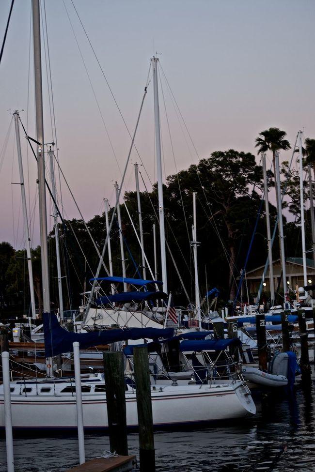 People watching the sunset at Dunedin Marina in Florida. #sunset #sun #clouds #skylovers #sky #nature #beautifulinnature #naturalbeauty #photography #landscape Dunedin Dunedin, Florida Florida Sunset Nature Outdoors People Watching Sunset Sunset Tranquility
