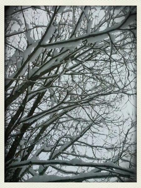 snow<3