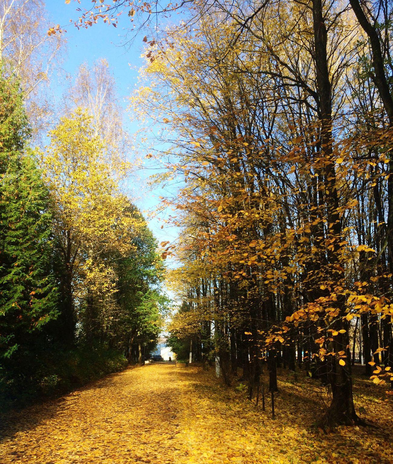 Autumn 😚 😚