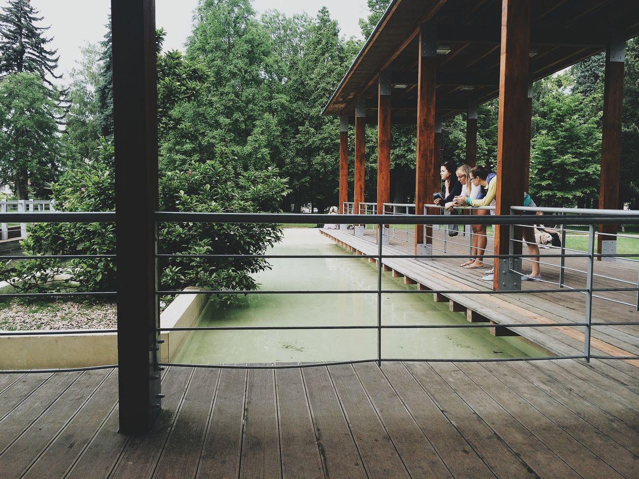 • Girl's talk • Park Japan Garden
