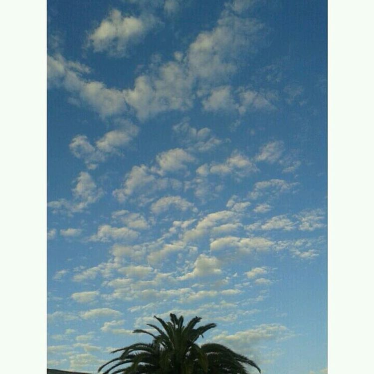 Sky Clouds Buenosaires ☁☁☁☁☁☁☁☁☁ ???? First Eyeem Photo