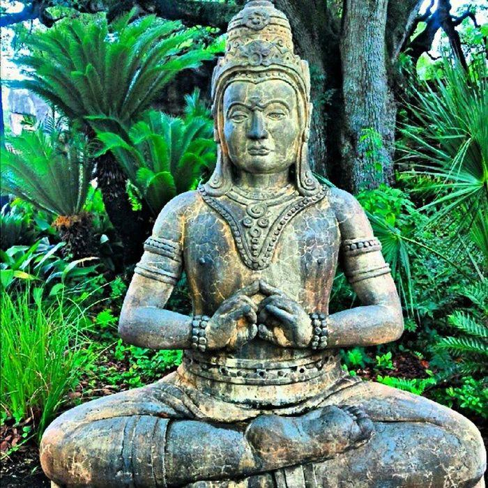 Buddha Budda Audubon Zoo neworleans