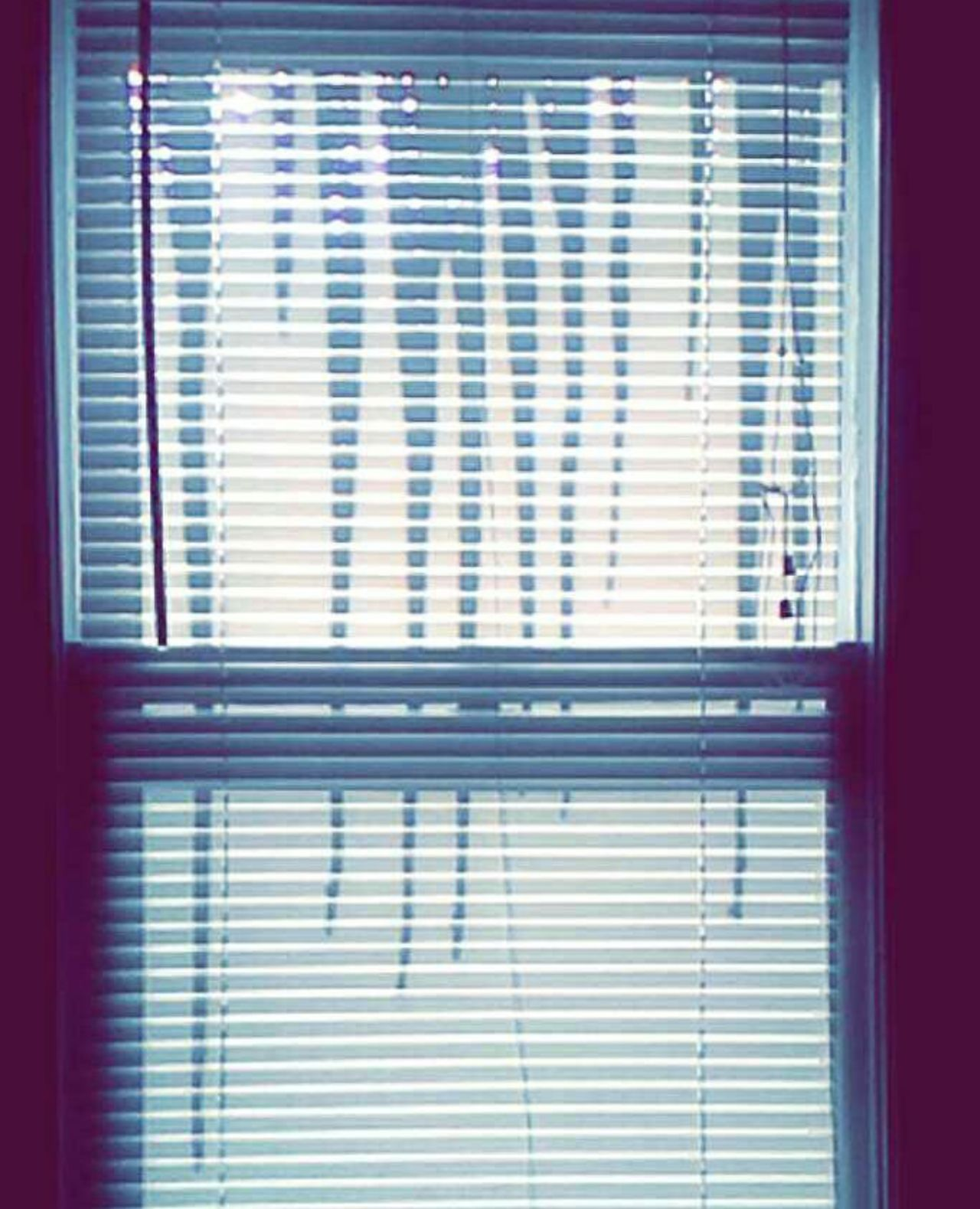 Window Curtain Blinds Pattern No People Day Indoors  Architecture Icicles Shawdows Silhouettes