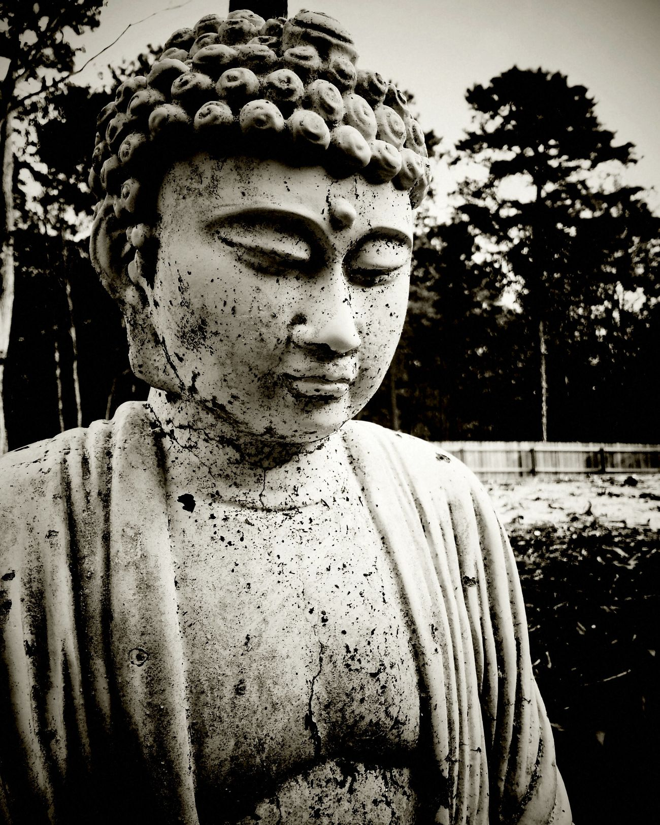 My Monochrome World Buddha Blackandwhite Monochrome