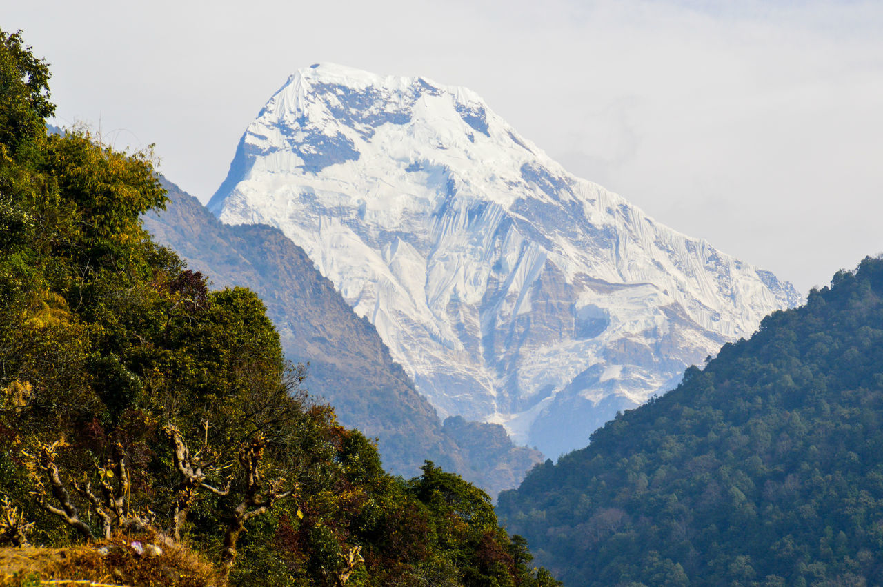 Annapurna Annapurna South Clear View Day Daydreaming Hiking Hiking Experience Hill Top Landscape Mountain Mountain Peak Mountain View Nature Nice View No People Outdoor Photography Outdoors Peak Poonhil Trek Sky Snow Tree Wilderness Nepal White