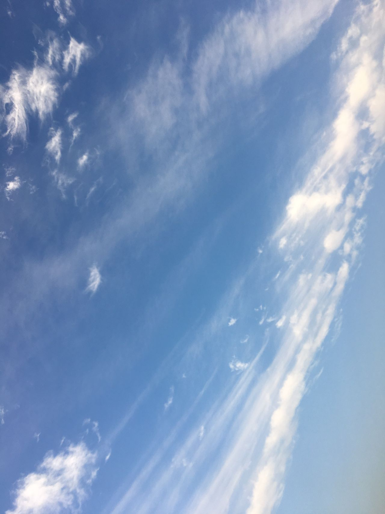 Sky Cloud - Sky Blue Low Angle View Nature No People Cirrus Day Beauty In Nature Outdoors Morning Sun Morning Sky Morning Light Morning Beauty In Nature Nature Kuwait City Kuwait❤ Clouds And Sky Sky_collection Sky And Clouds Backgrounds Tree