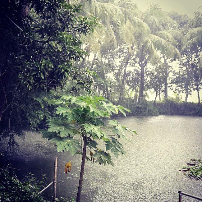 Dadurbari Pond Pouringhard Rain instashot instagood igers tagforlikes instanature