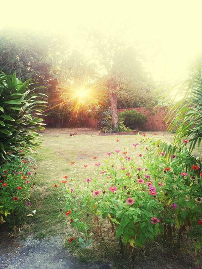 Um prazer imenso ter essa vista em casa. ♡ i love