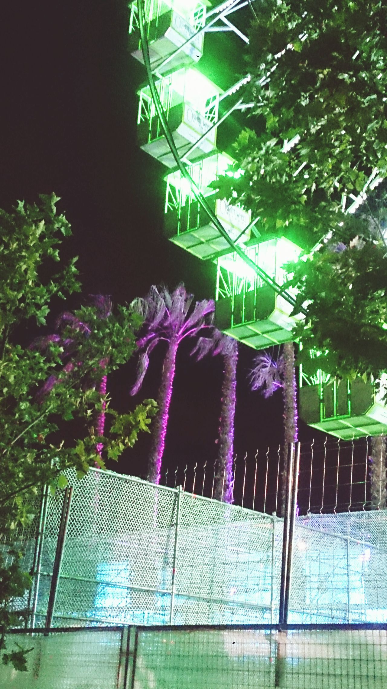 Madcool Palmeras Noria Palm Trees Ferriswheelinthecity🎡🎢 Ferris Wheel Madrid Spain Fesival Festivalesforever