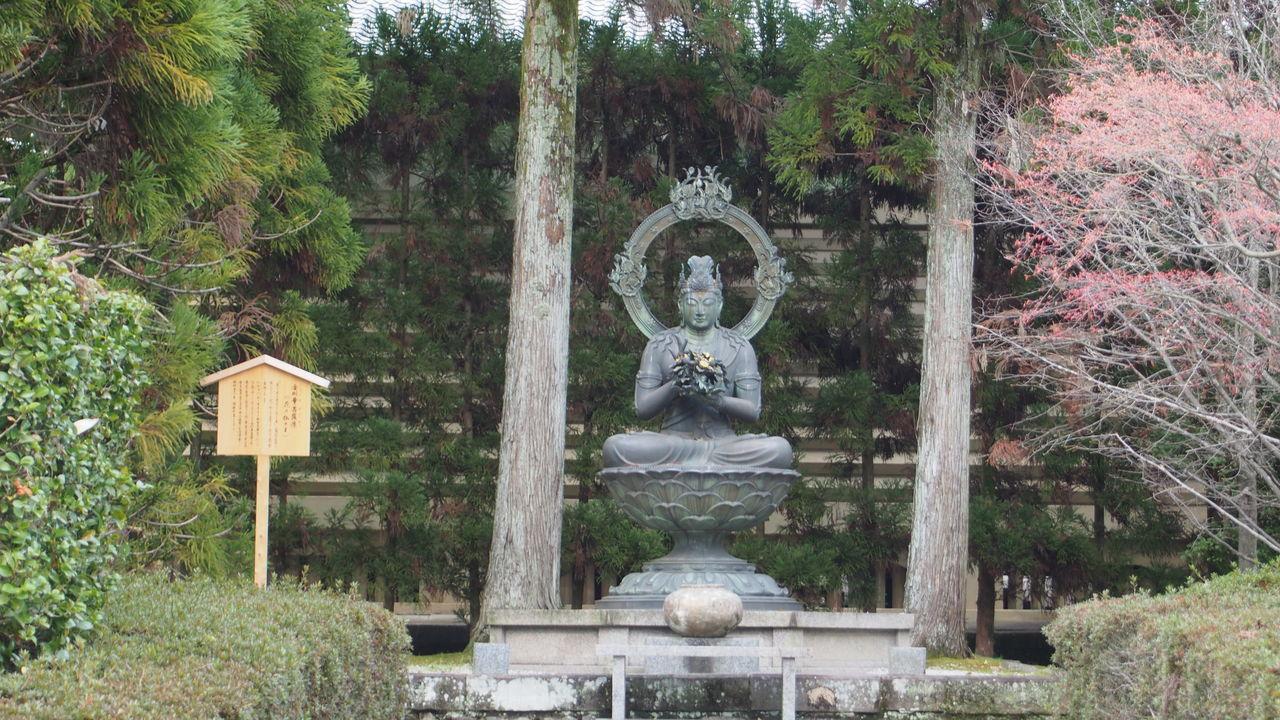 確か仁和寺 Art And Craft Buddha Buddhism Creativity Day Growth Human Representation Japan Japanese Culture Japanese Temple Male Likeness Nature No People Outdoors Religion Sculpture Statue Tree 仁和寺