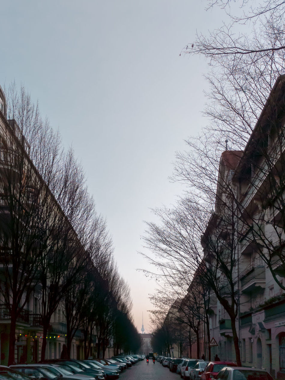 Bare Tree Berlin Car City Copy Space Day Nature No People Outdoors Sky Snow Street Tree Vanishing Point Winter
