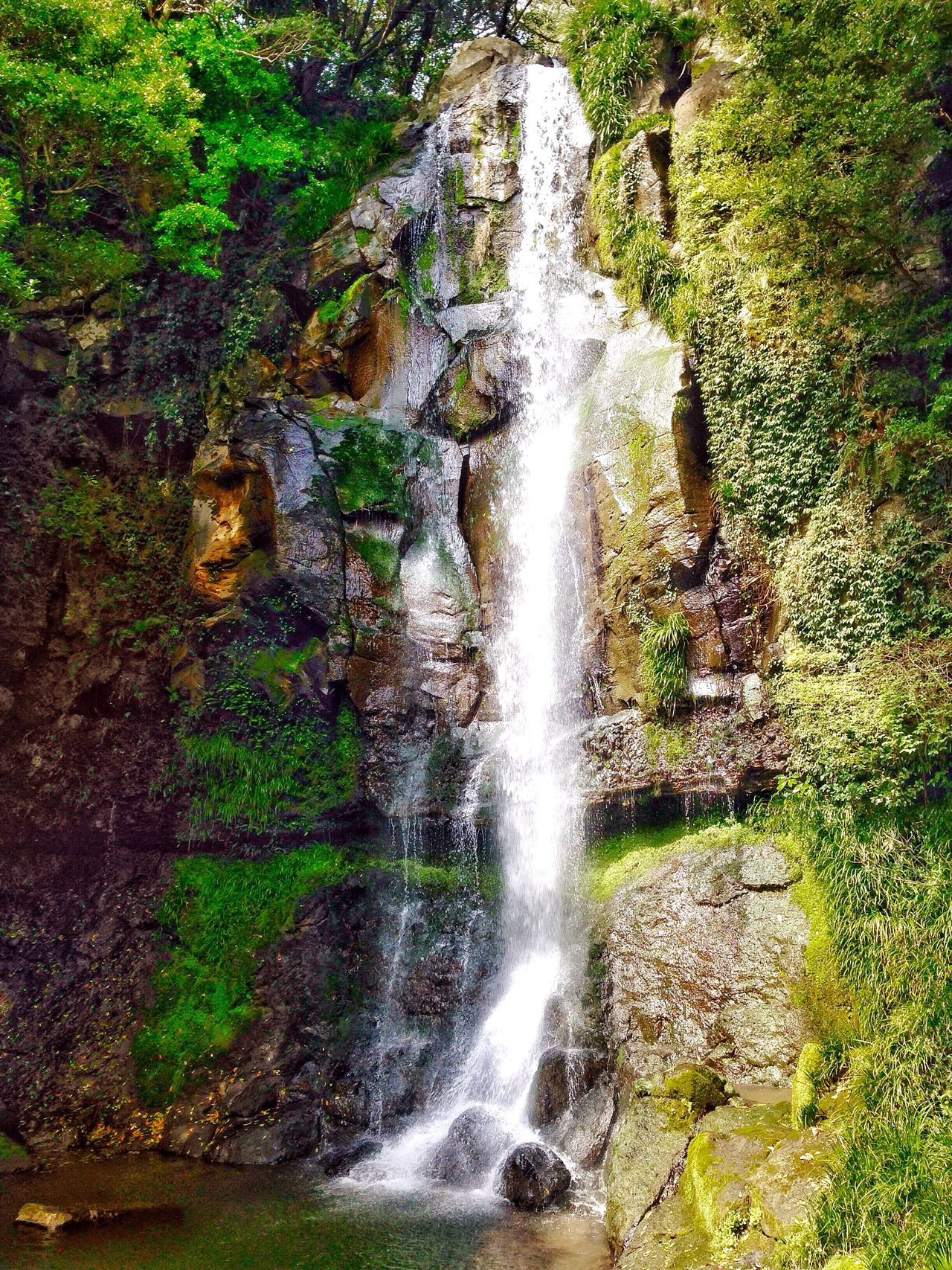 Hello World Chasing Waterfalls Waterfall #water #landscape #nature #beautiful Alwaysaventurous In The Woods In The Forest Eye Em Around The World Mountains And Valleys Creekside Trail Naturelovers Nobody Around Spring Into Spring Outdoor Photography